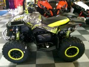 2015 BRP Can-Am Renegade 1000 XXC 7